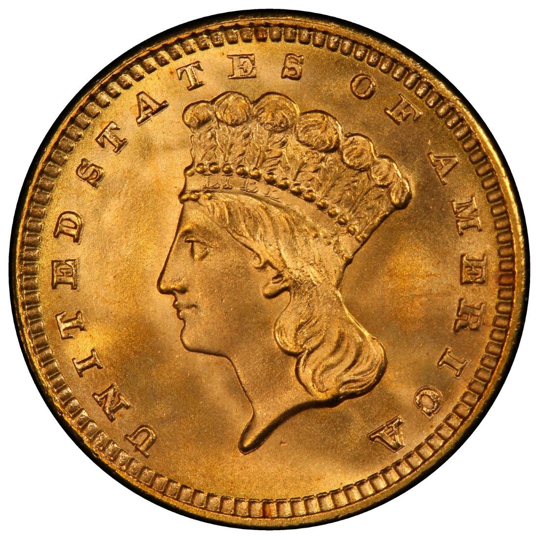 1888 Large Head Indian Princess Gold Dollar Values And