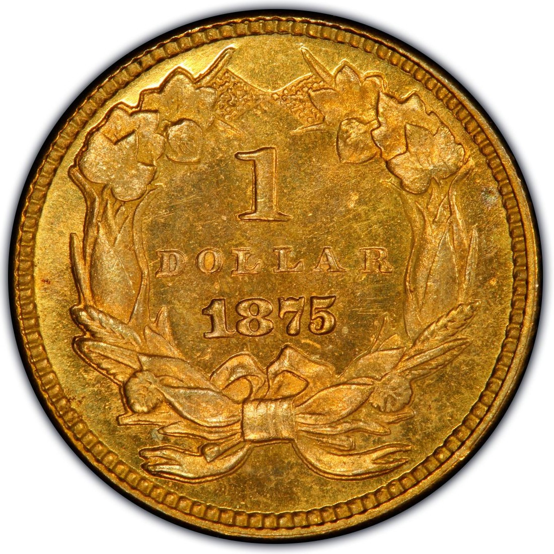 1875 Large Head Indian Princess Gold Dollar Values And