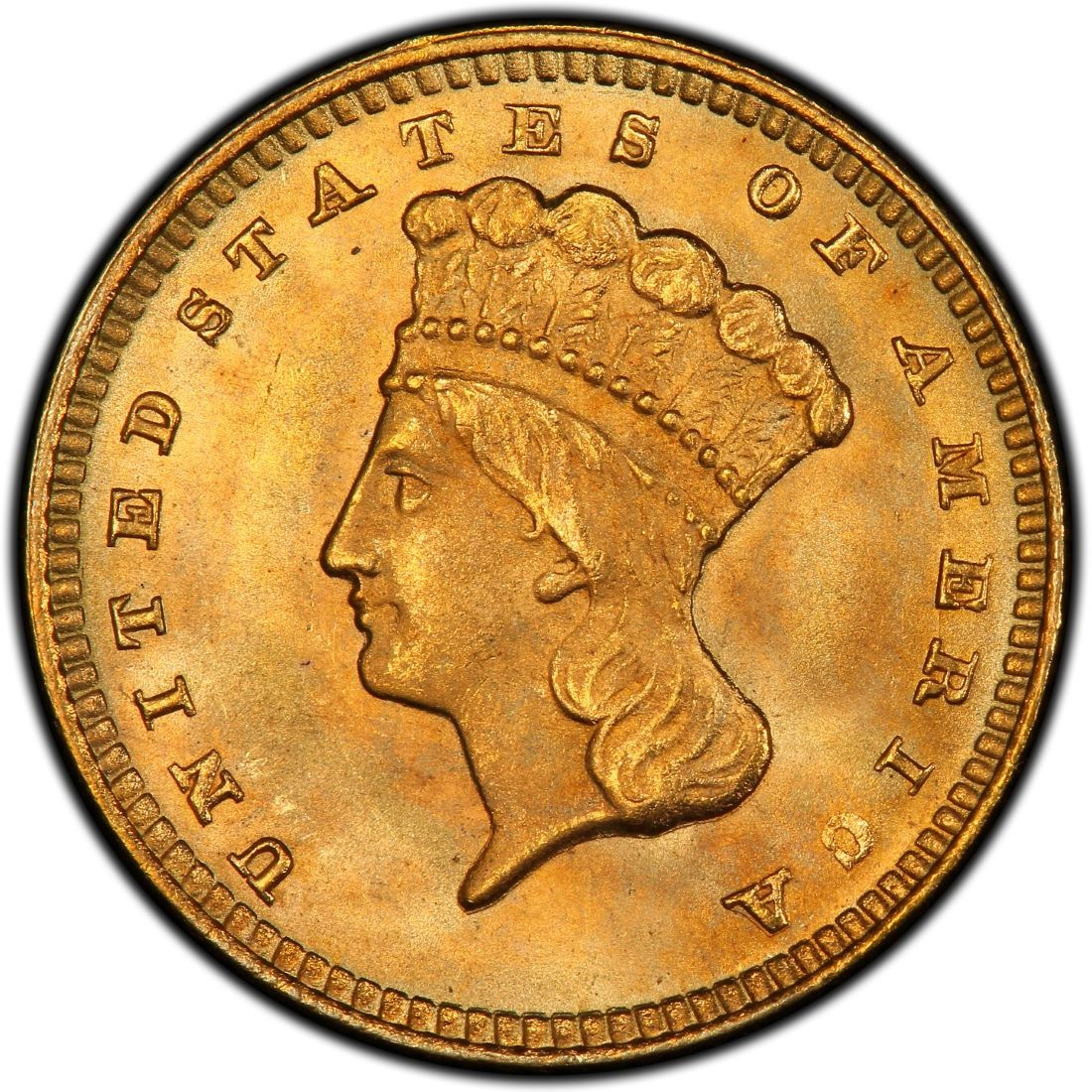 1874 Large Head Indian Princess Gold Dollar Values And