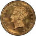 1878 Large Head Indian Princess Gold Dollar