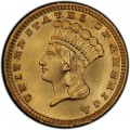 1884 Large Head Indian Princess Gold Dollar