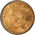 1887 Large Head Indian Princess Gold Dollar