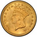 1870 Large Head Indian Princess Gold Dollar