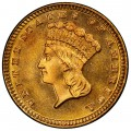 1883 Large Head Indian Princess Gold Dollar
