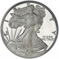 2007 American Silver Eagle Value