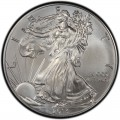 2013 American Silver Eagle Value