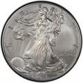 2013 American Silver Eagle Value