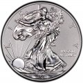 2011 American Silver Eagle Value