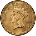 1879 Large Head Indian Princess Gold Dollar