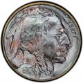 1913 Buffalo Nickel Dollar Value
