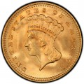 1862 Large Head Indian Princess Gold Dollar