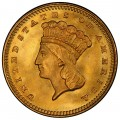 1873 Large Head Indian Princess Gold Dollar