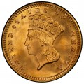 1888 Large Head Indian Princess Gold Dollar