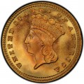 1881 Large Head Indian Princess Gold Dollar