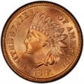 1881 Indian Head Pennies