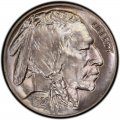 1925 Buffalo Nickel Dollar Value