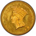 1875 Large Head Indian Princess Gold Dollar