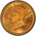 1869 Large Head Indian Princess Gold Dollar