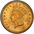 1874 Large Head Indian Princess Gold Dollar