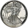 1989 American Silver Eagle Value