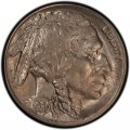1920 Buffalo Nickel Dollar Value