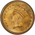 1880 Large Head Indian Princess Gold Dollar