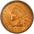 1891 Indian Head Pennies