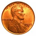 1929 Lincoln Wheat Pennies