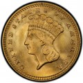 1889 Large Head Indian Princess Gold Dollar