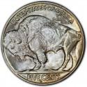 1924 Buffalo Nickel Dollar