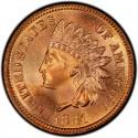 1881 Indian Head Pennies