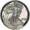 1989 American Silver Eagle Value