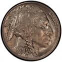 1920 Buffalo Nickel Dollar Value